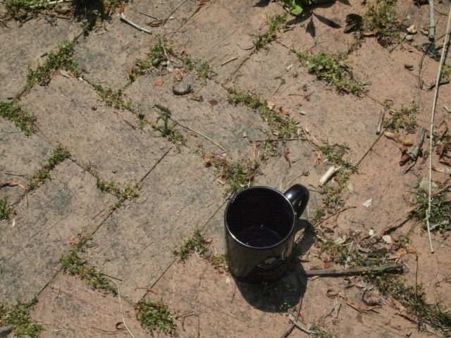 Pavers and a coffee cup.